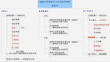《2020年财税细节与评估程序案例》思维导图录屏课(陈淑亭)