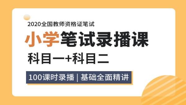 2021年全国教资考试小学笔试精品录播课(科目一+科目二)