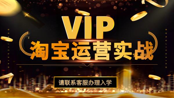 淘宝VIP高级运营实战系列课程【立南教育】
