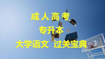 全国成人高考专升本大学语文成考过关宝典