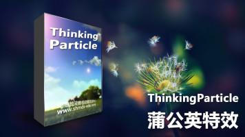 3dmax插件thinkingparticle基础—蒲公英飘散效果【幻维炫动】
