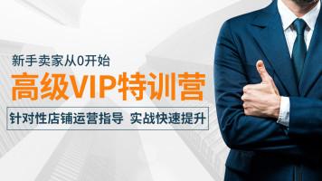 淘紫电商高级VIP实战特训营