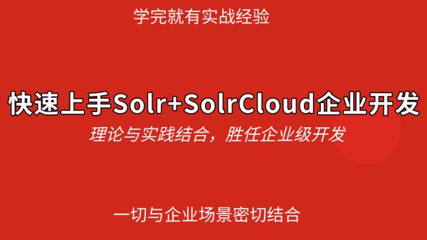 (独家)快速上手Solr+SolrCloud企业开发