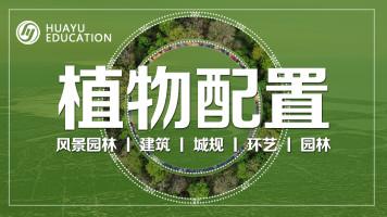 植物配置(园林+建筑+城规通用)— 初级班