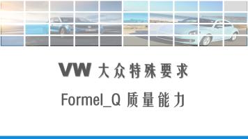 大众特殊要求:Formel_Q质量能力