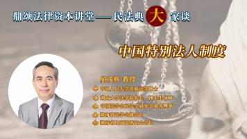中国特别法人制度