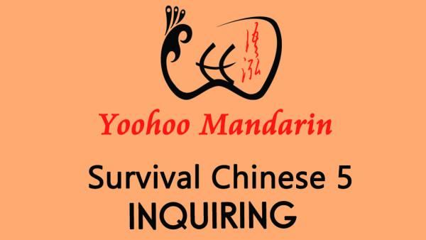 Survival Chinese 5---Inquiring