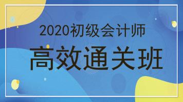 2020年初级会计职称初级会计师高效通关班