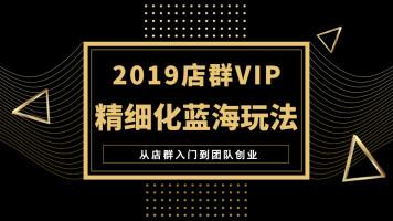 2021年最新淘宝店群无货源精细化终极蓝海玩法【录播VIP系统课】