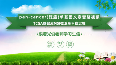 pan-cancer(泛癌)单基因文章套路视频(MSI微卫星不稳定性)