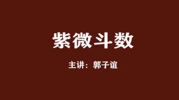 【免费】郭子谊讲紫微斗数系列课程01-02节