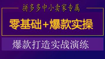 拼多多运营80节系列课程 基础+高级【网商教育】淘宝电商运营学习