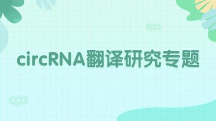 circRNA翻译研究专题