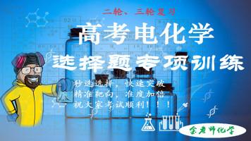 高考电化学选择题专项练习 电池 电解池高效突破 金老师化学