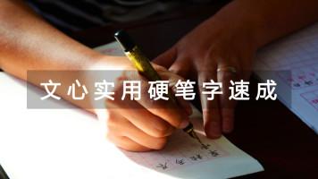 文心练字实用硬笔速成