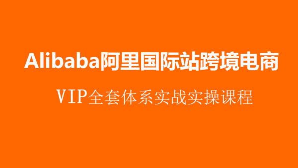 跨境电商阿里国际站(Alibaba)VIP体系实战指导课程【优梯跨境】