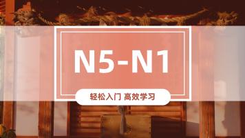 N5-N1高效全能班