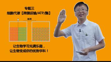 专题三 细胞代谢【跨膜运输/ATP/酶】