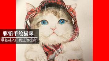 彩铅宠物动物手绘画教程课程 零基础即学即会 VIP系统学习课程