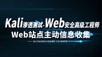 kali渗透测试/web安全/白帽子黑客/网络安全/站点主动信息收集