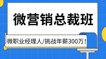 微营销实战总裁班/微职业经理人/挑战年薪300万