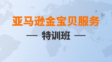亚马逊金宝贝服务特训班-2021年百聚汇卖家服务