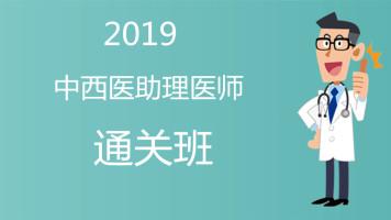 【杏海教育】2019中西医助理医师 通关班