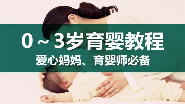 保健:0-3岁育婴教程(爱心妈妈、育婴师必备)