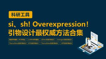 科研工具:si、sh!-Overexpression!引物设计最权威方法合集