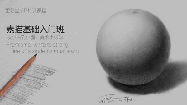 素描基础入门班VIP系统特训课程【重彩堂教育】