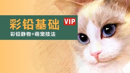 【VIP】适合小白《彩铅基础》手绘/绘画/色彩/美术/排线条/质感