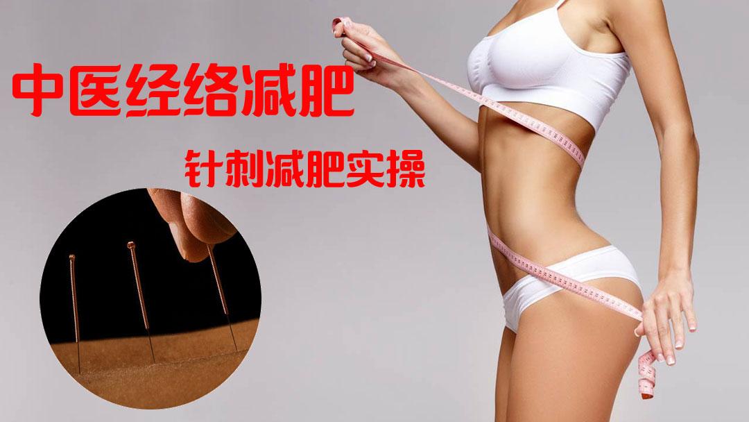 中医经络减肥—针灸针刺减肥实操(基础班)