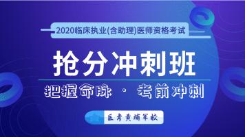 金英杰2020临床执业(含助理)医师抢分冲刺班