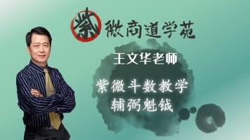 12王文华老师紫微斗数初级篇-辅弼魁钺