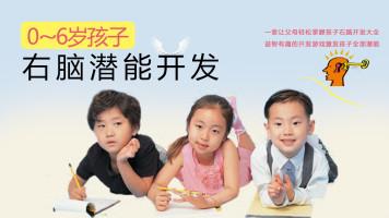 (0~6岁)儿童右脑潜能开发全套教程