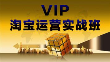 VIP实战班淘宝运营系列课程(拍前联系老师)
