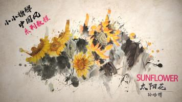 Sunflower 太阳花  孙培博 附原版谱【小小指弹吉他教程】