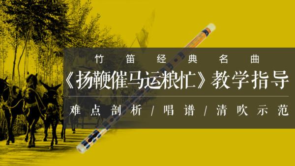 竹笛/笛子经典名曲《扬鞭催马运粮忙》讲解、示范、教学