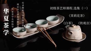 茶艺(师)培训课程——初级茶艺师课程•选集(一)