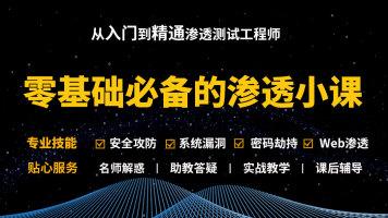 零基础渗透测试/linux/kali/网络安全/信息安全/黑客/web安全