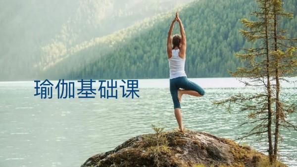 瑜伽基础课/《肩颈康复理疗》序列课  1~3节课
