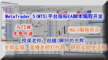 MT5指标EA开发MQL5语言(入门班)