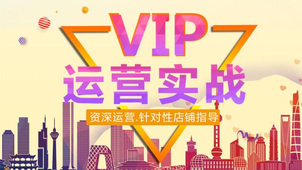 【鑫巢高级VIP】淘宝0基础实战运营推广活动直通车精细化教学班