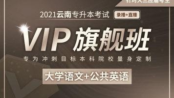 【应届班】2021云南专升本VIP旗舰班(大学语文、公共英语)