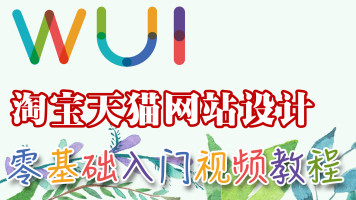 【吴刚大讲堂】淘宝天猫网站设计零基础入门标准视频教程