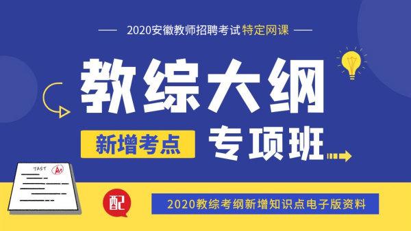 2020安徽省教师统考-教综大纲新增考点专项班【师出教育】