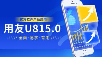 用友U8V15.0实战应用入门到精通/生产/供应链/财务/人力资源/官方
