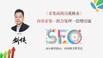 seo采集内容组合处理优化及霸屏倍增引流【seo权重流量站课程】