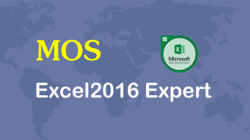 MOS Excel2016 Expert