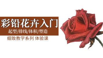 [细致教学系列 ]— 彩铅花卉体验课/零基础彩铅绘画入门
